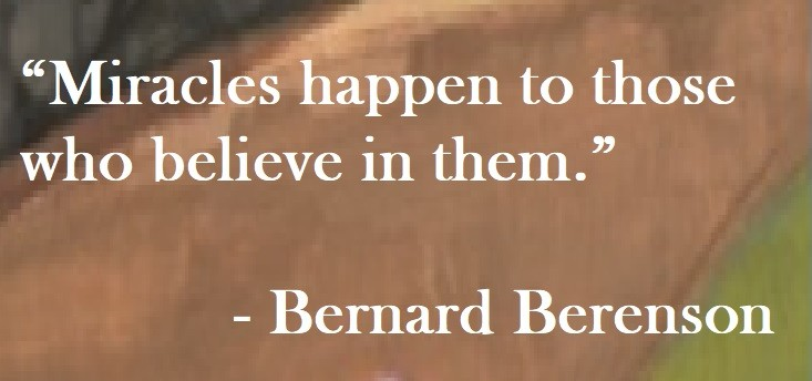 Bernard Berenson Quote on Hoist Point - Miracles happen to those who believe in them.