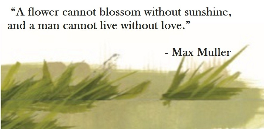 Max Muller Quote on Hoist Point - A flower cannot blossom without sunshine, and a man cannot live without love.