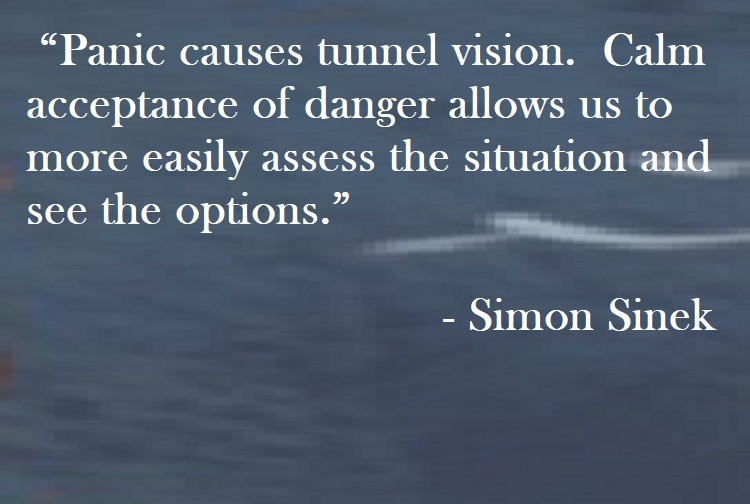 Simon Sinek Quote on Hoist Point - Panic causes tunnel vision. Calm acceptance of danger allows us to more easily assess the situation and see the options.
